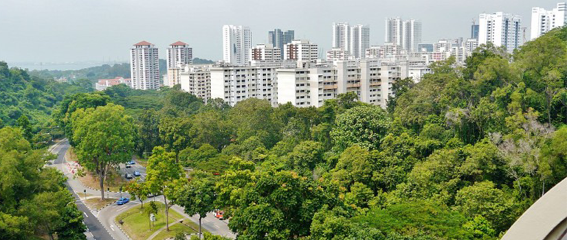 Why is sector 150 Noida emerging as the greenest residential hotspot in NCR